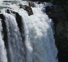 Roaring Waterfall - Snoqualmie Falls by jkmarshall