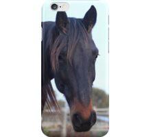 beautiful horses iPhone Case/Skin