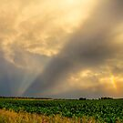 Farmers Weather Optics by Bo Insogna