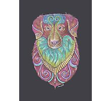 Duck Toller Totem Photographic Print