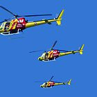 Helicopter Trio by Margaret Stevens