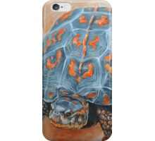 Box Turtle Taking A Walk iPhone Case/Skin