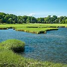Marsh at Long Warf, Gloucester, MA Early Evening by Rebecca Bryson