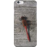Invisible dragonfly wings iPhone Case/Skin