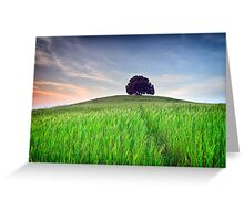 The Tuscany Chestnut tree Greeting Card