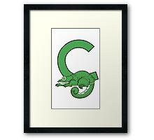 C is for Chameleon Framed Print