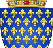 Coat of Arms of the Kingdom of France (-1305; 1328–1376) by PattyG4Life