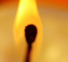 Burn by Carol James