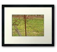 Tangled wire Framed Print