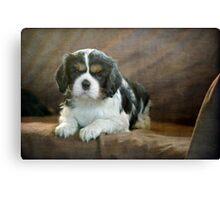 Puppy Perfect Canvas Print