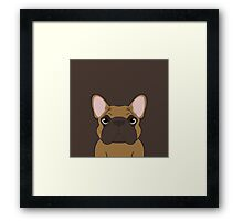 Frenchie - Fawn  Framed Print
