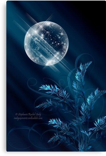 Birth Of Winter by Stephanie Rachel Seely
