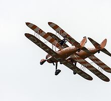 Wing Walkers by J Biggadike