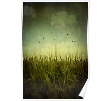 In the Field Poster