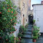 Gardening - Anghiari Style by Francis Drake
