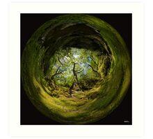 Ness Glen, Mystical Irish Wood Art Print