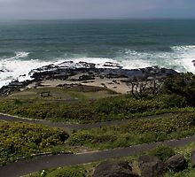 Cape Perpetua ©  by © Hany G. Jadaa © Prince John Photography