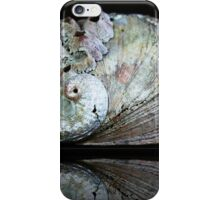 Barnacles on a Seashell  iPhone Case/Skin