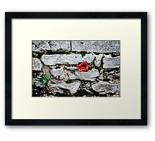Tower of London Poppy artists exhibition... Framed Print