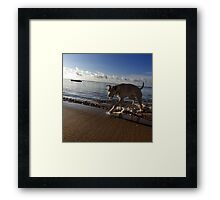 Every day is her day. Framed Print