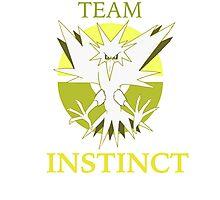 TEAM Instinct! PKMNGO Photographic Print
