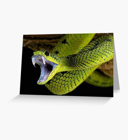 Fangs Green Snake Greeting Card