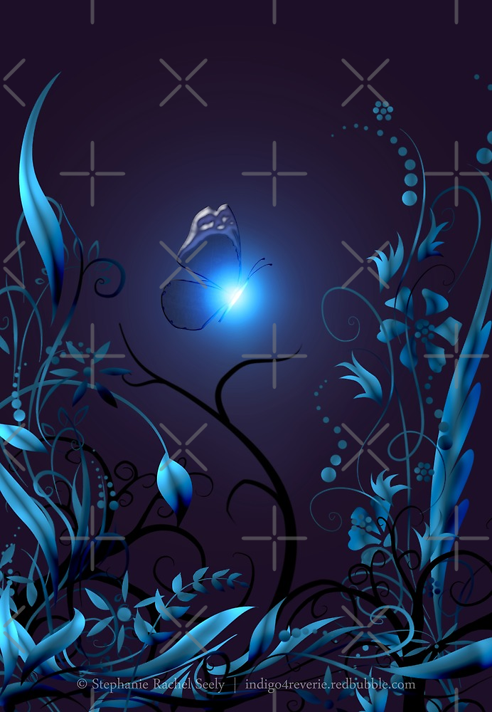 Nightshade by Stephanie Rachel Seely