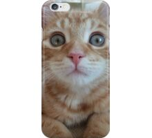 Woody the cat iPhone Case/Skin