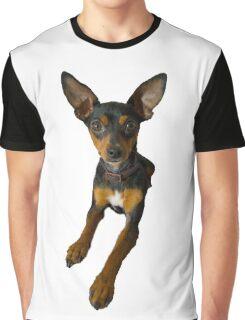 Conchita - a small doberman pincher like species of dog Graphic T-Shirt
