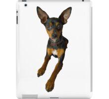 Conchita - a small doberman pincher like species of dog iPad Case/Skin