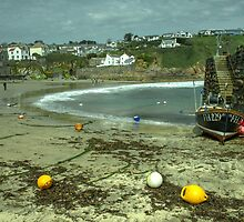 The beach at Gorran Haven  by Rob Hawkins