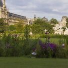 Tuileries Garden, Paris, France by Elaine Teague