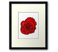 Open Red Rose Framed Print
