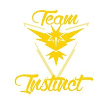 Team Instinct - Pokemon Go Photographic Print