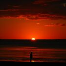 Alone at Sunset by Marilyn Harris