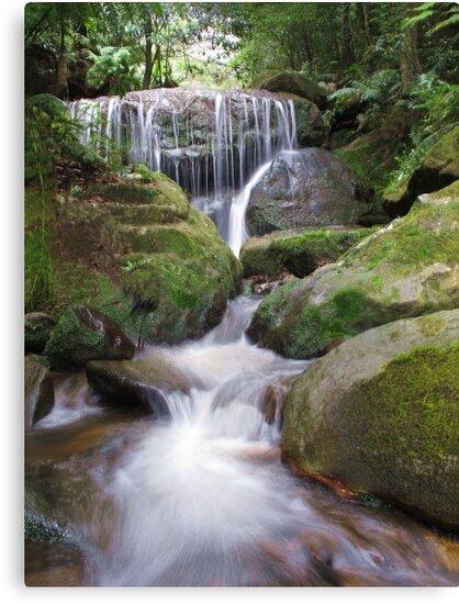 Leura Cascades by Michael John