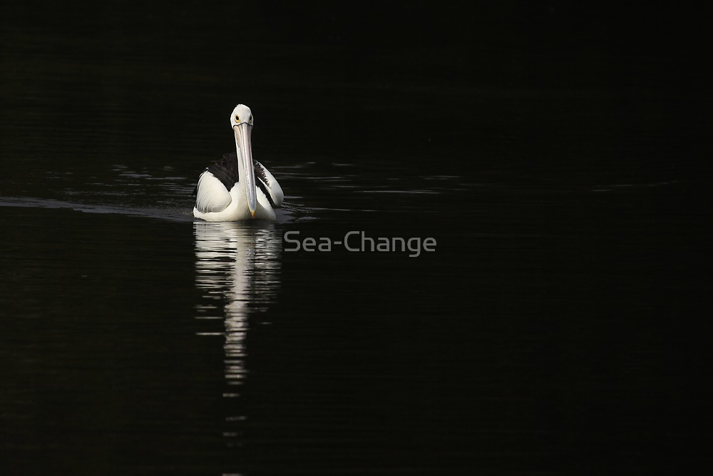 Reflecting by Sea-Change