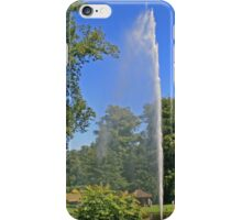 Centenary Fountain, Forde Abbey iPhone Case/Skin