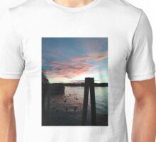 Sunset Upon the Ducks Unisex T-Shirt