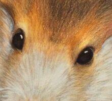Bubba the Hamster Sticker