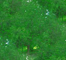 Green Nature by Vera Penkova