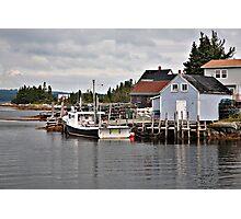 Bush Island Photographic Print