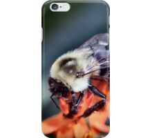Buzzing About iPhone Case/Skin