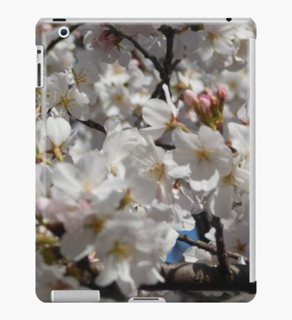 Cherry Blossoms in Washington DC iPad Case/Skin