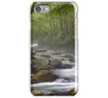 Clarity and Perception iPhone Case/Skin