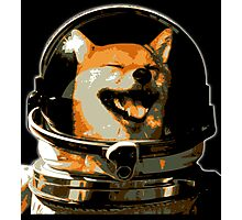 Space Doge Photographic Print