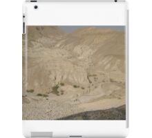 Surroundings of the Dead Sea iPad Case/Skin