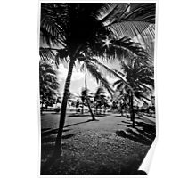 Miami Beach Morning in black & white Poster