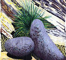 Two large rounded ROCKS * by James Lewis Hamilton