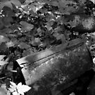 Discarded Youth - 1 by Tony Wilder